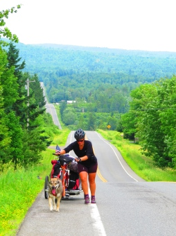 It wouldn't be fair if we left Osa our trusty sidekick at home so she will be cycling with us from Mount Carleton, NB to the ocean via the mighty Penobscot River.